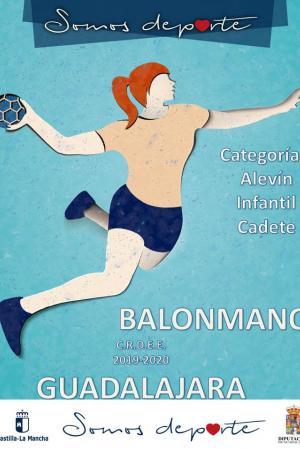 FASE PROVINCIAL BALONMANO ALEVIN
