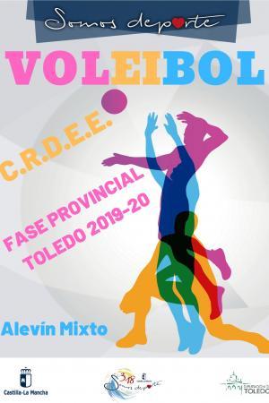 Cartel Fase Provincial de Voleibol - Alevín Mixto